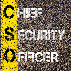Duties of a Chief Security Officer (CSO) image
